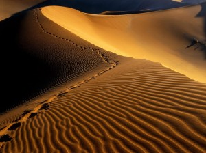 footprints-namib-desert-namibia-africa-backgrounds-wallpapers